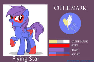 Flying Star [Reference]