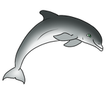 Bottlenose Dolphin by Aqrion-Admin