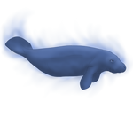 Manatee Wisp by Aqrion-Admin