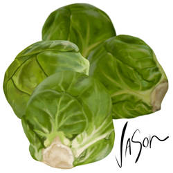 Brussels Sprouts by fordonfoodart