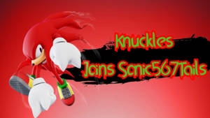 Knuckles Joins Sonic567Tails