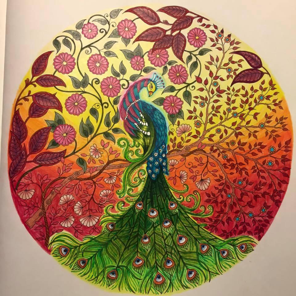 Secret garden coloring book website - Bgerr 26 14 Secret Garden By Johanna Basford Colouring Book By Pixelnsprites