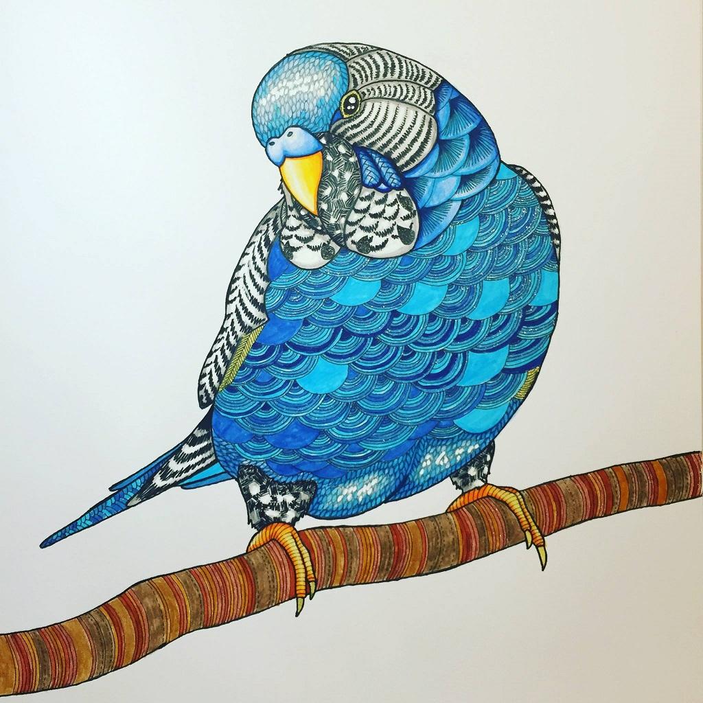 PixelnSprites 7 0 Animal Kingdom By Millie Marotta Colouring Book