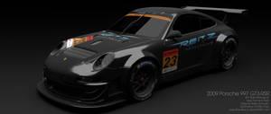 2009 Reitz Motorsport Porsche 997 GT3-RSR