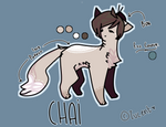 my oc - chai (reference)