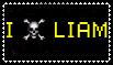 I Skull Liam by LiamJohansen