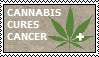 Cannabis Cures Cancer by Sour-Sauce-Stamps