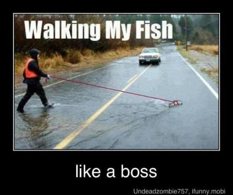Dude be walkin' fishes by Osyka-Larochelle