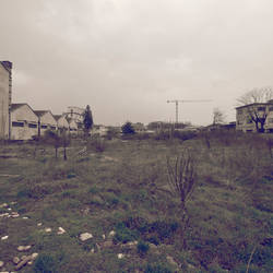 Desolation Row VII