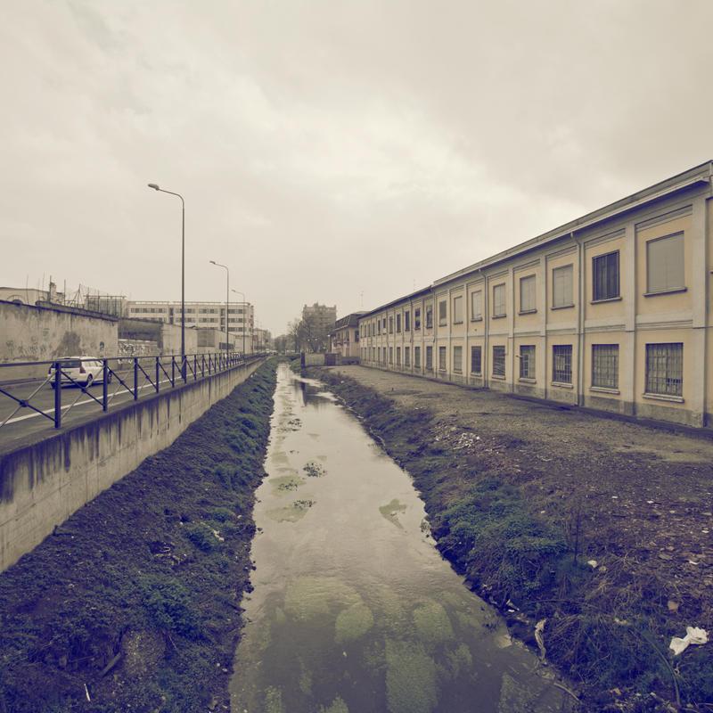 Desolation Row VIII