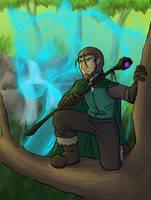 Druidofthewolf Commission #1 by dragonsong12
