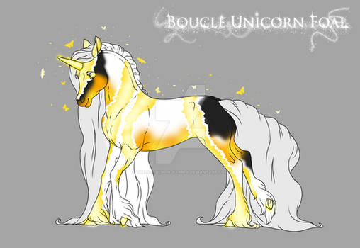 P278 Boucle-Unicorn foal design