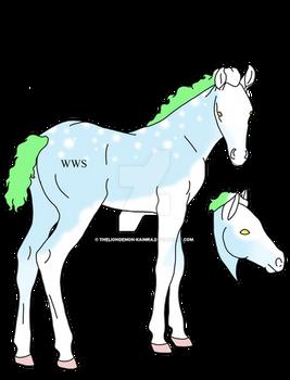 Misfit Foal Import