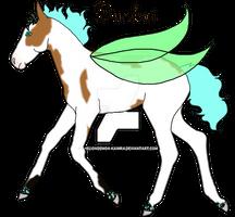 Dunkai Foal