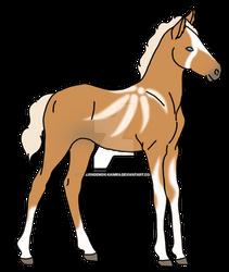Tamy- foal