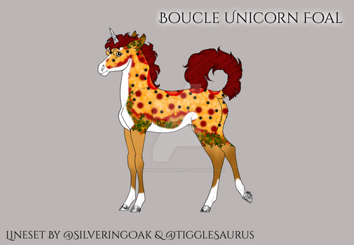 Q436 Boucle Unicorn foal