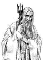 Saruman the Wise by jenj