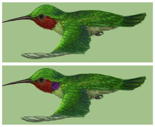 Leafman Hummingbird Concept by Madchangeling