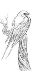 Swallow Sketch by Madchangeling