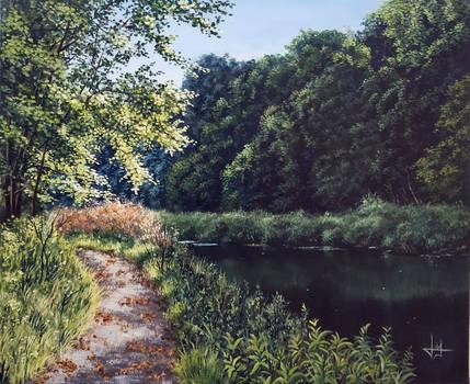 Path follow the river