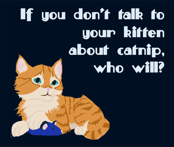 Talk to your Kitten by damphyr