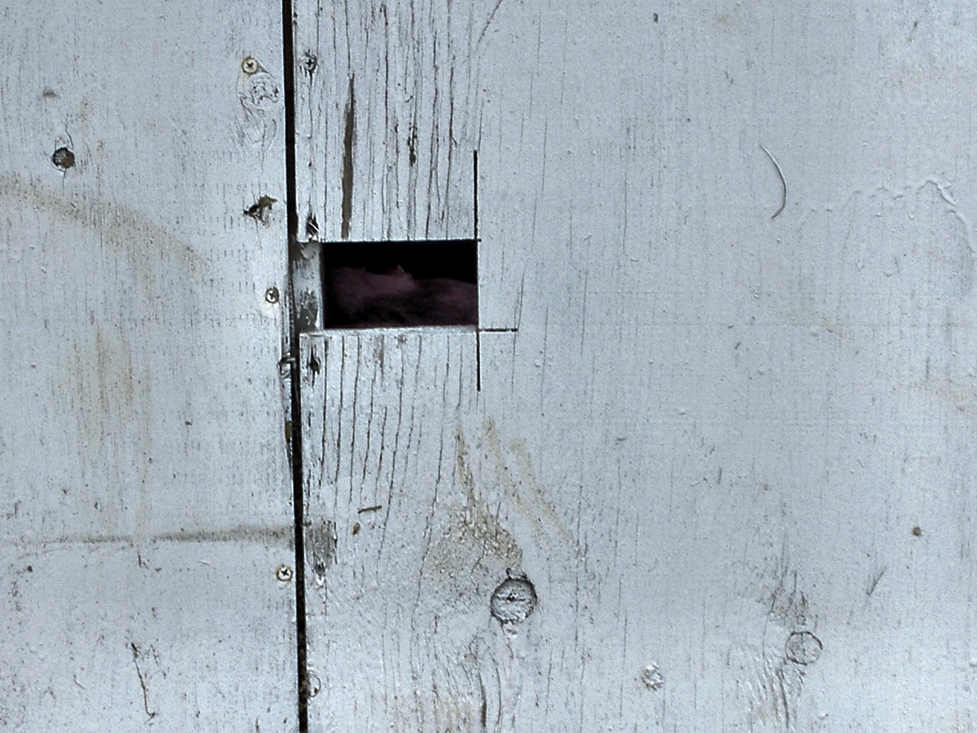 Structure_wall_wood 01 by Aimelle-Stock