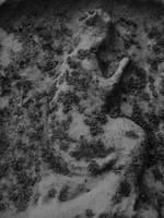 Stone Angel by w0rmwood