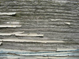 Texture: Wood by w0rmwood