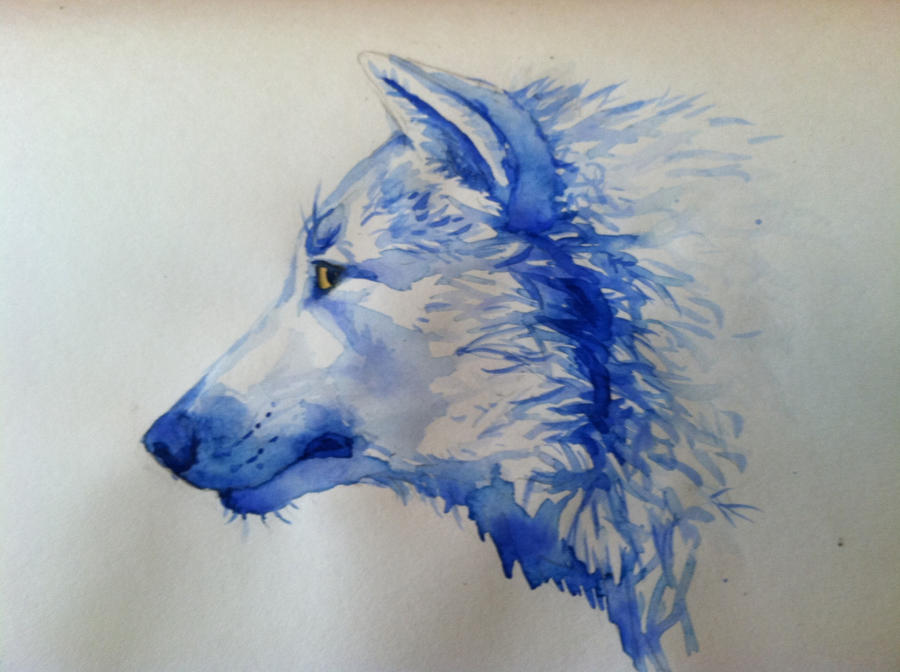 Watercolor wolf by Hiedidog on DeviantArt