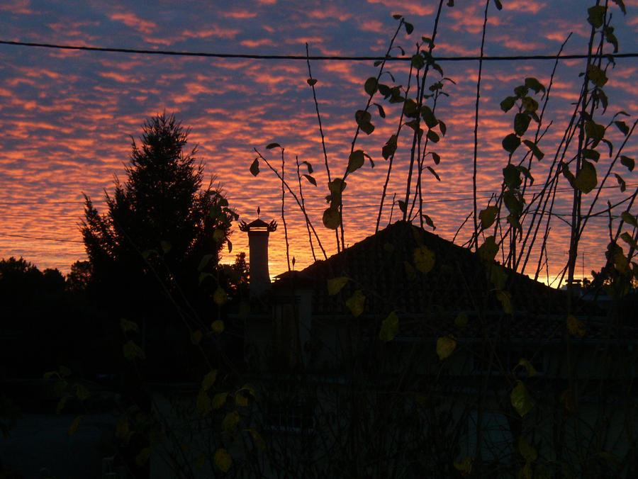 Morning... (original image) by minihumanoid