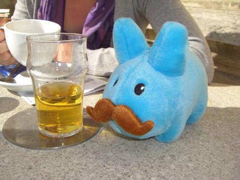Beer loving Labbit
