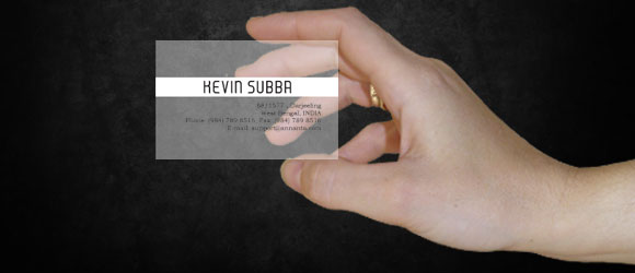 Translucent Business Card by annanta