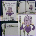 Iris notebook cover by Vetriz