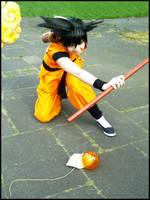 Goku: Fight-love by da-monkey