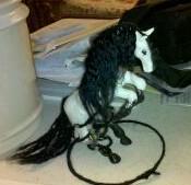White Horse: Calypso by CosmicDragonJazz