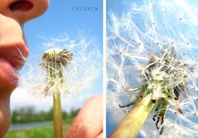 papadie by Crizata