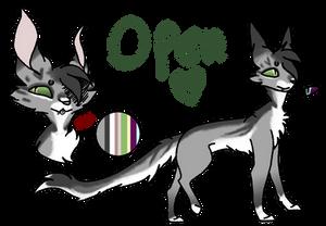 Open~ OTA Cat