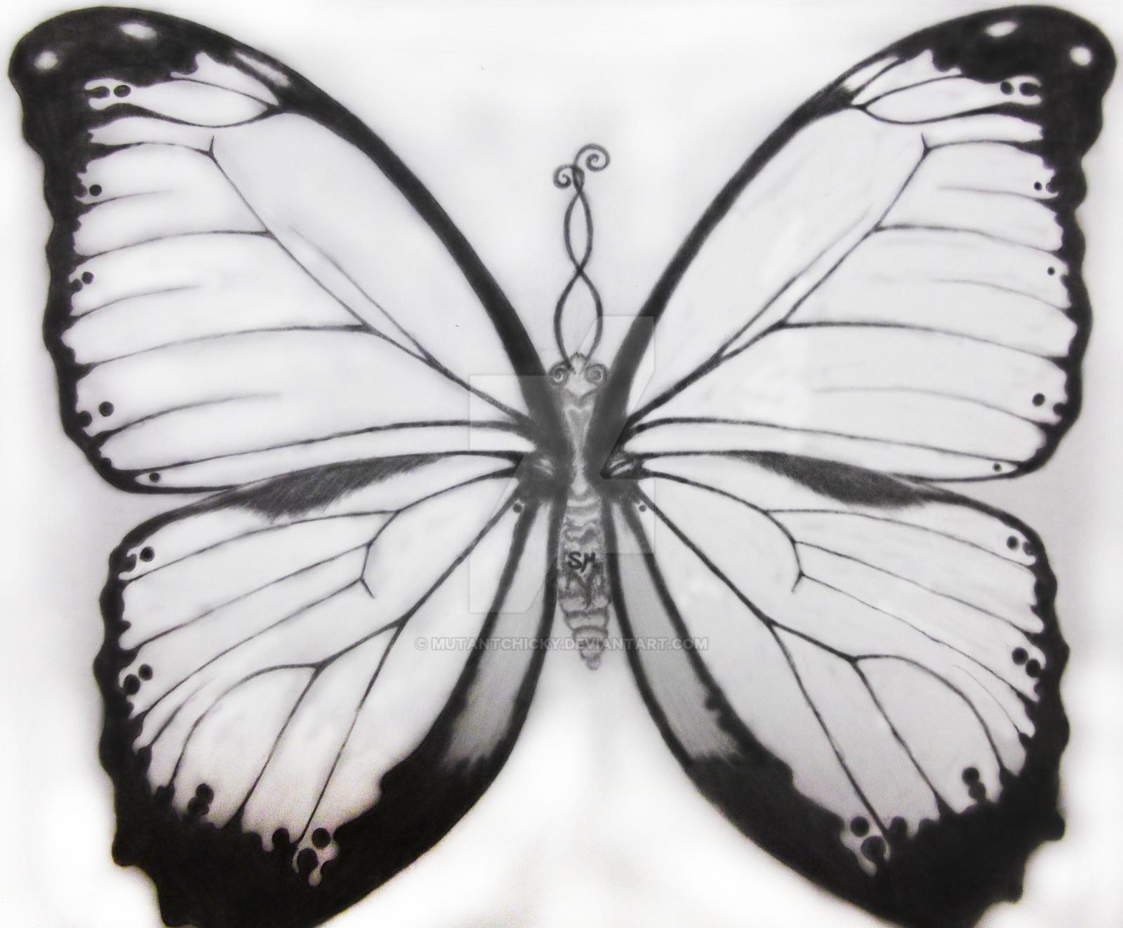 754ecb14410b5 sidneys butterfly tattoo sketch by MutantChicky sidneys butterfly tattoo  sketch by MutantChicky