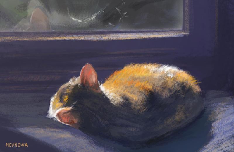 window study by Mevrona