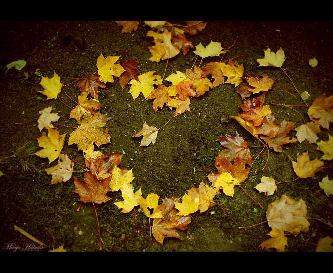 Leafheart. by MUA-Maano