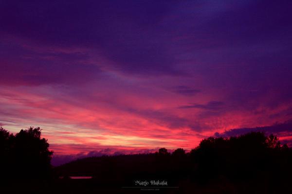 Bloody morning. by MUA-Maano