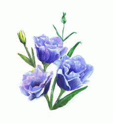 Blue Flowers - acrylic by miemotio