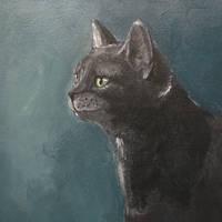 Grey cat - acrylic by miemotio