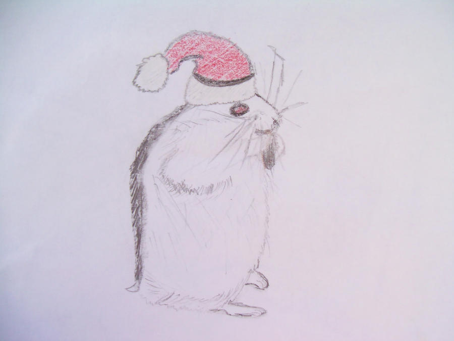 Christmas Hamster by Cookieanime