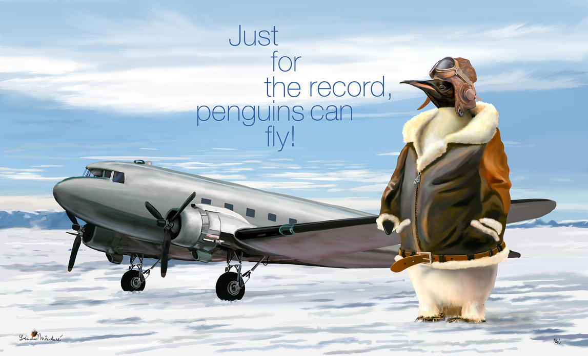 Penguins Can Fly Studio Martare NielsTieland by NLS61