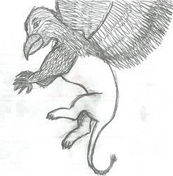 Gryph sketch by Gash-ren