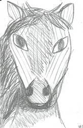 Mare head sketch by Gash-ren