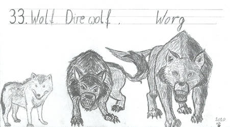 33. Wolf, Dire wolf and Worg