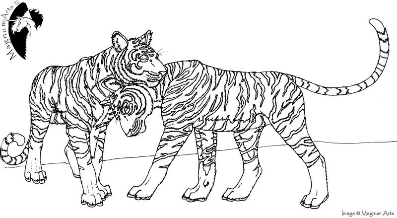 Color-Me: Two Tigers by Magnum-Arts on DeviantArt