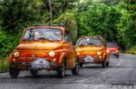 Raduno Fiat 500 - 2008 No. 157   Garlenda